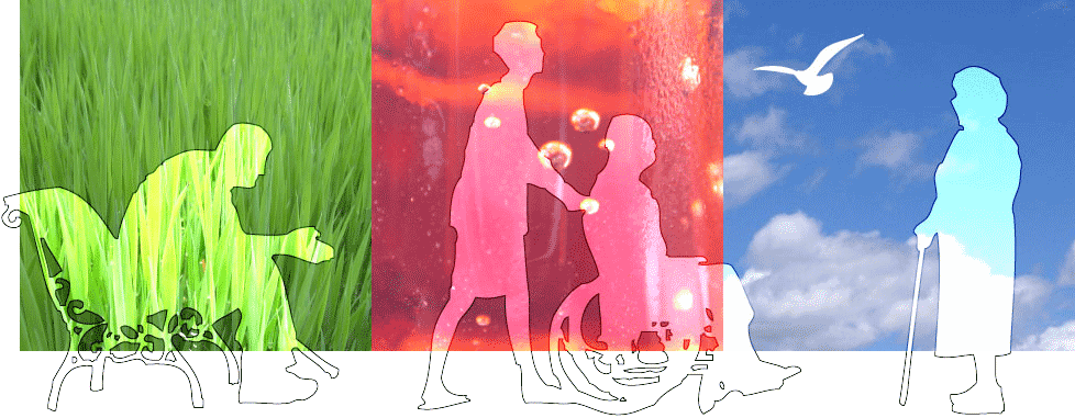 de Koning Creaties - omgevingsvormgevers - Kleurvlakken